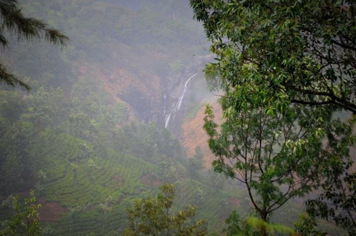 Attukad Water Falls, Munnar