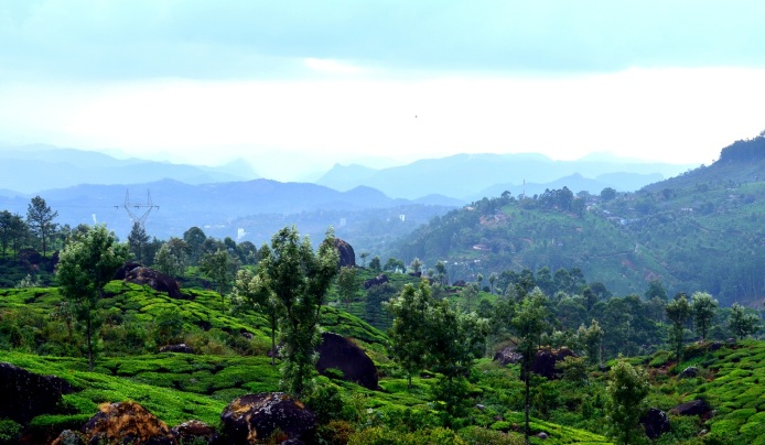 Pothamedu Viewpoint, Munnar